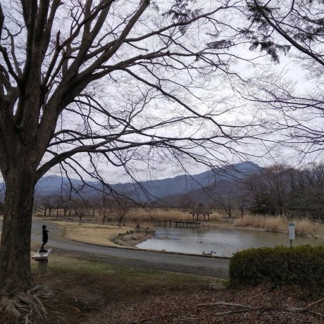 War and Peace In Nagano
