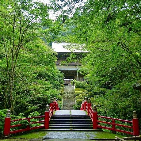 Tochigi Ungan-ji Temple
