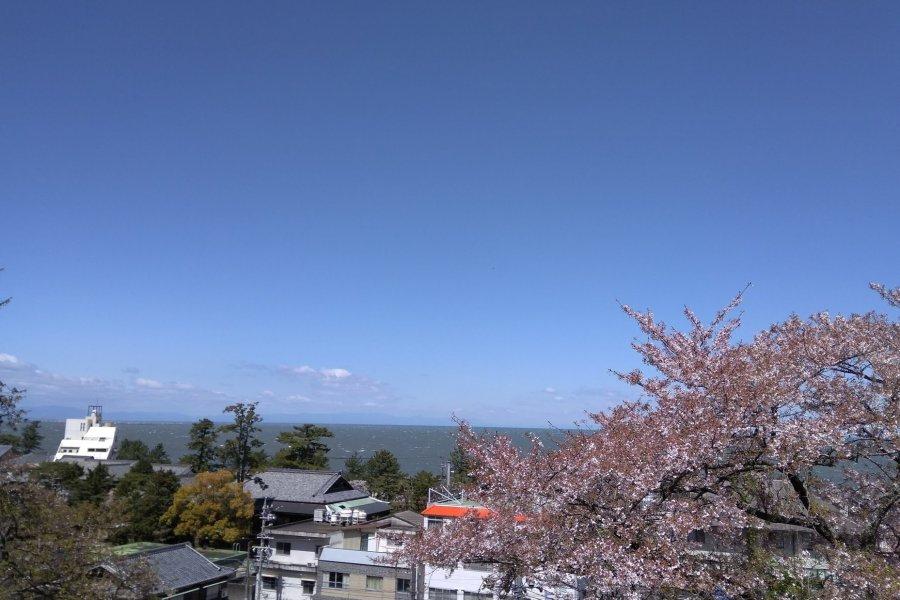 Fun in Futami