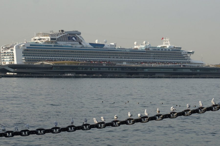 Yokohama Osanbashi Port Guide