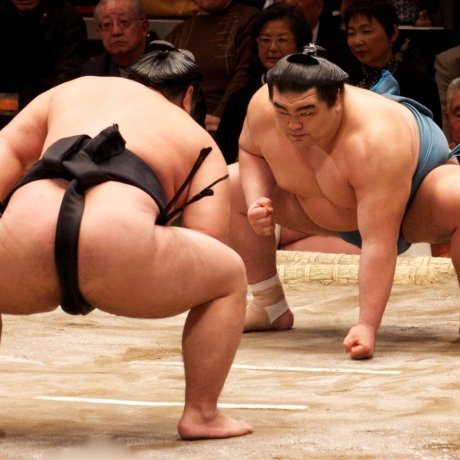 Tokyo Grand Sumo May Tournament