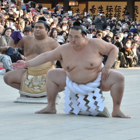 Special Exhibition: The 72nd Yokozuna Kisenosato