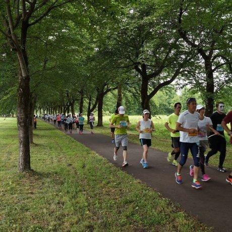 The Minamiuonuma Gourmet Marathon