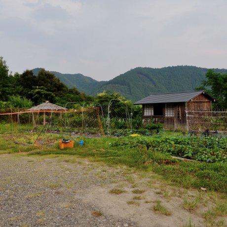 Kumano Deai-no-sato Egg Farm