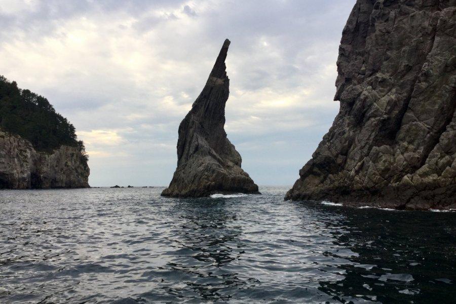 Incredibly Captivating Dogo Island