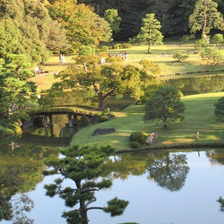 Golden Hour in Rikugien Garden