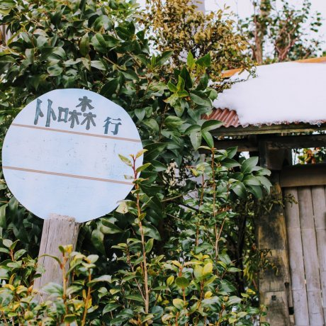 Kurosuke's House at the Totoro Fund