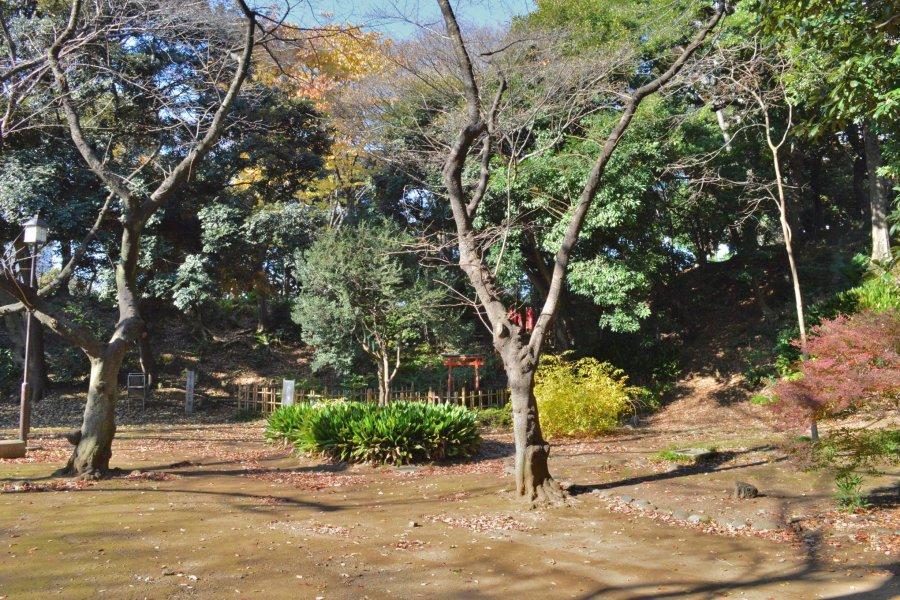 Shiba Maruyama Kofun