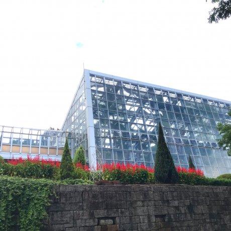 Honai Park
