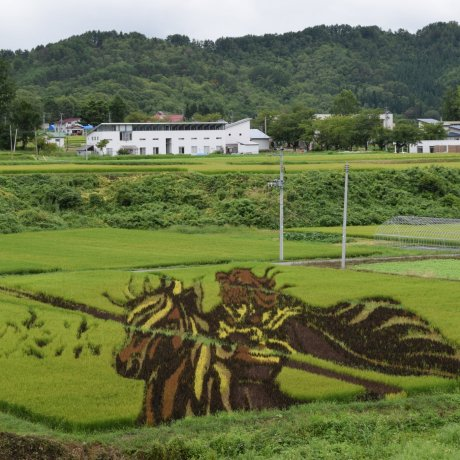 A Road Trip Through Tohoku