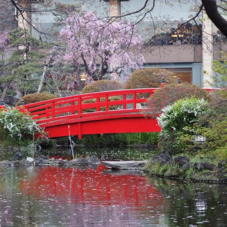 The Japanese Garden of Hotel New Otani
