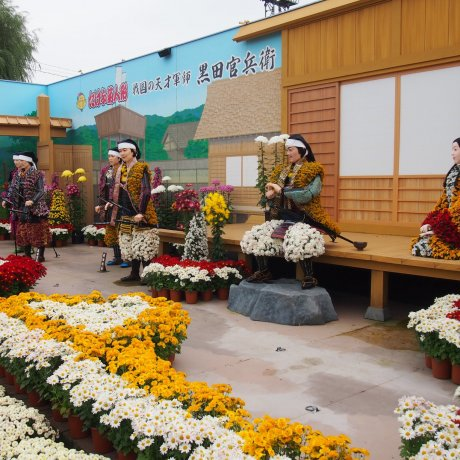 Takefu Chrysanthemum Doll Festival