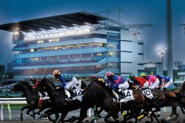 Shinagawa History, Izakaya, and Horse Racing Walking Tour