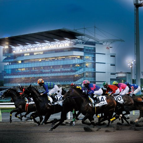 Shinagawa History, Izakaya, and Horse Racing Walking Tour