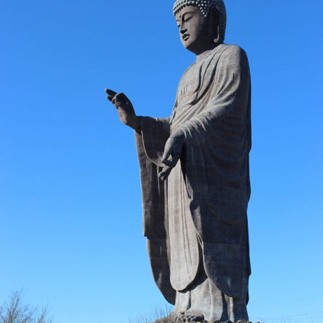 Ushiku Daibutsu New Year Events