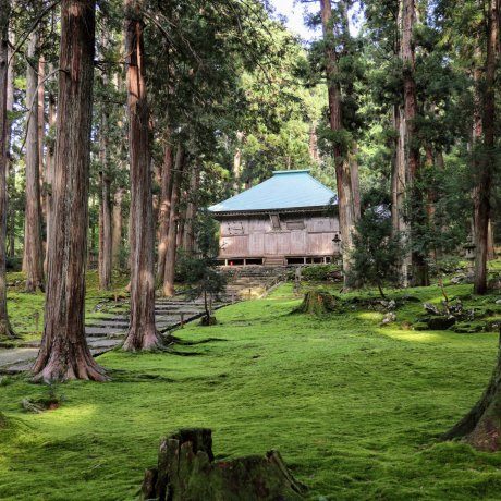 4 Days in Fukui and Shiga: Venturing South
