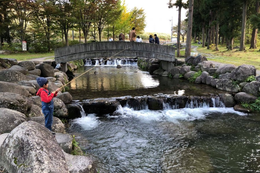Enjoy the Day at Yuzawa Fishing Park
