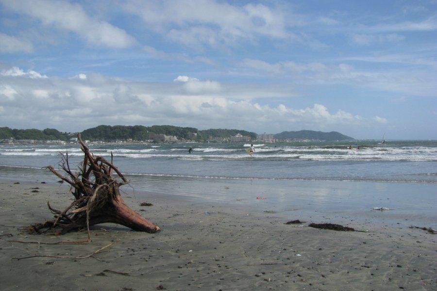 The Coast of Sagami Bay