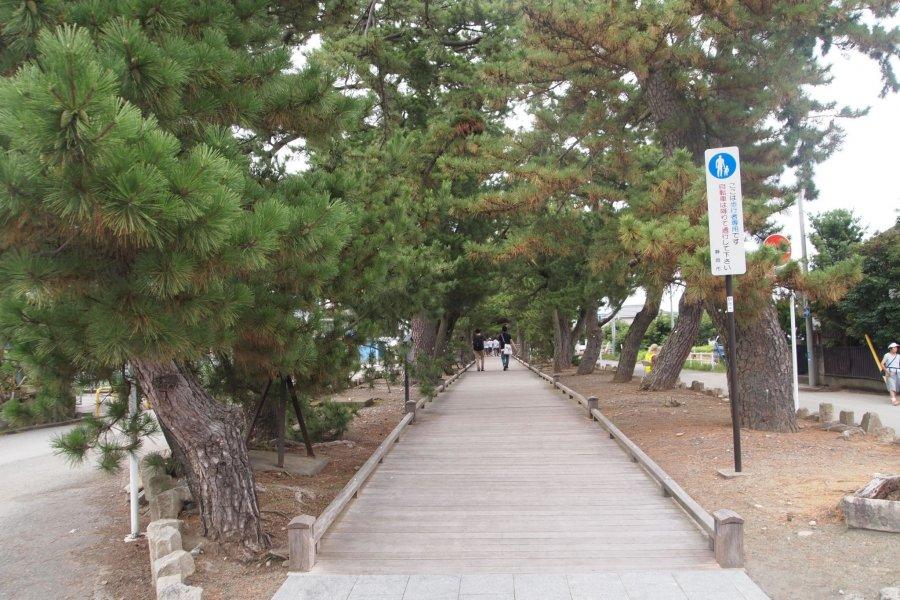 Miho-no-Matsubara in Shimizu
