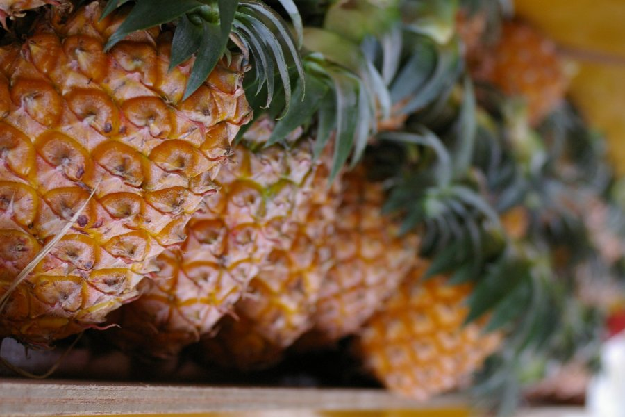 A Vegan-friendly Guide to Okinawa