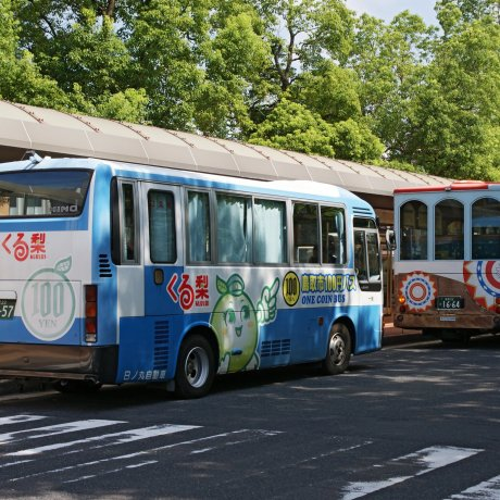 Tottori City's Kururi Bus