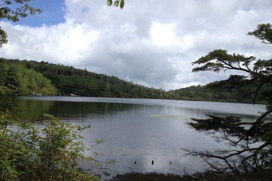 Shirakoma Pond and Forest