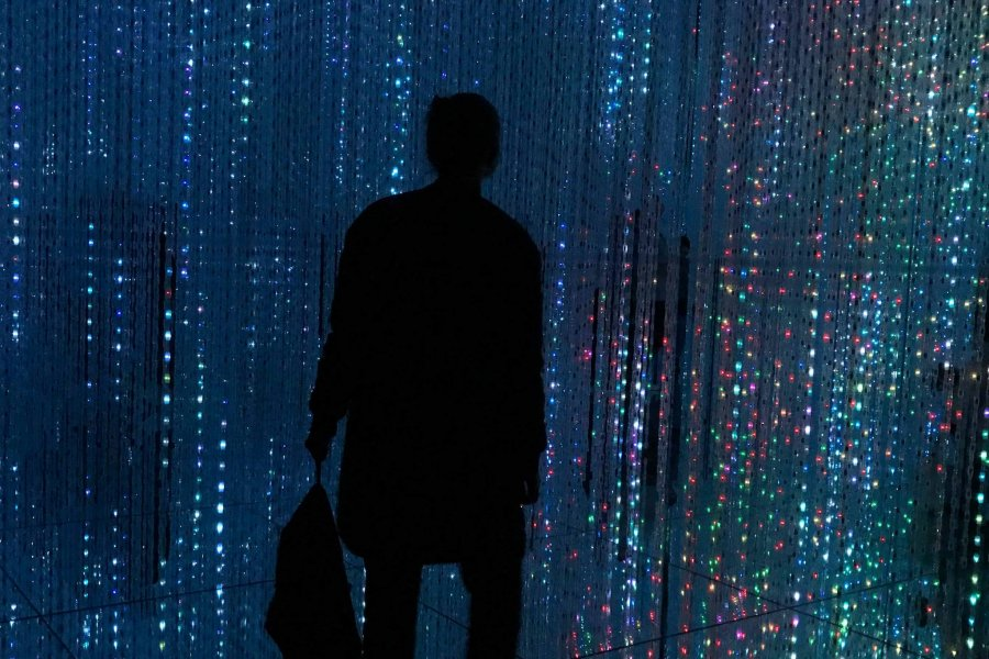 Teamlab Borderless: What a Museum!