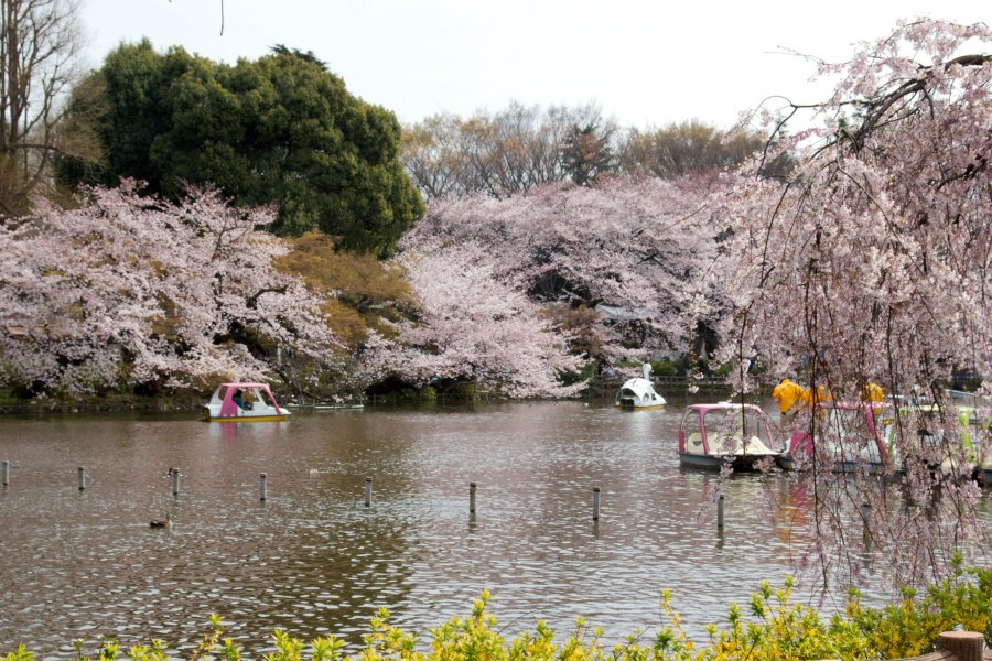 Mitaka City - Parks & Gardens