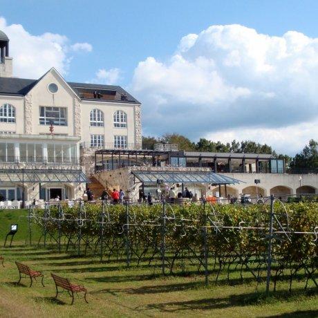 Naka Izu Winery Chateau T.S.