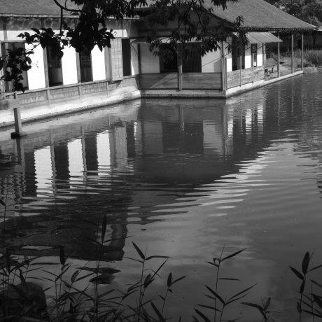 Fukui's Yokokan Garden