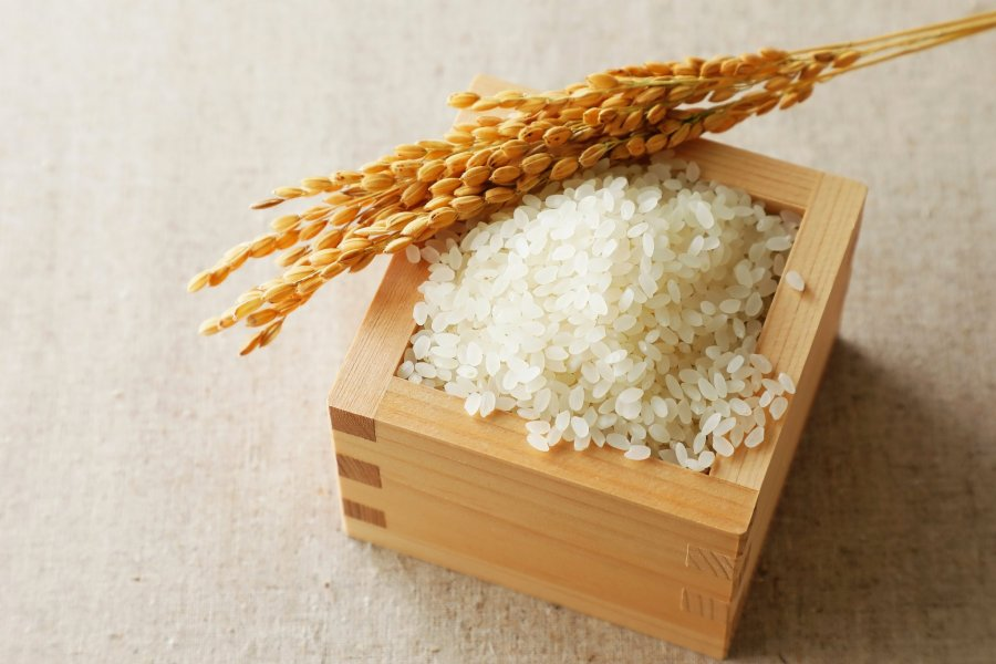 An Introduction to Japanese Rice