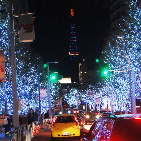 Roppongi Illumination Events