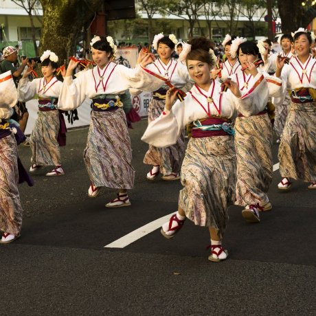 Yosakoi Dance Festival