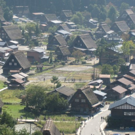 A Perfect View of the Gassho Houses