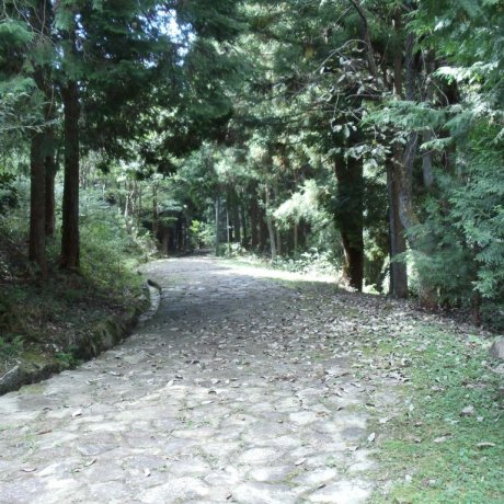 The Nakasendo at Ochiai Juku