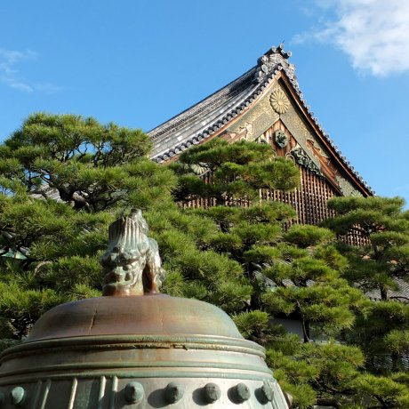 The Beauty of Nijo-jo Castle - 3