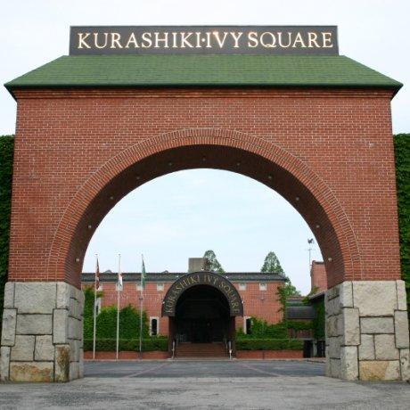 Ivy Square