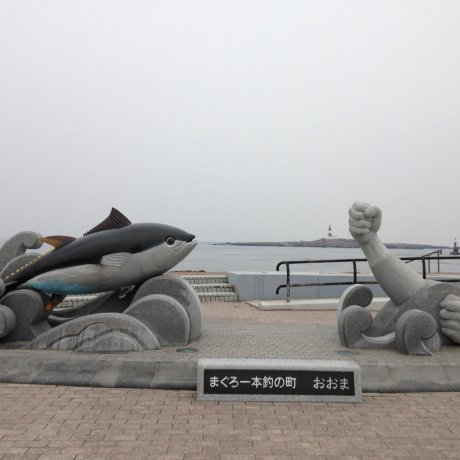 Visiting Oma: Japan's Northernmost Point
