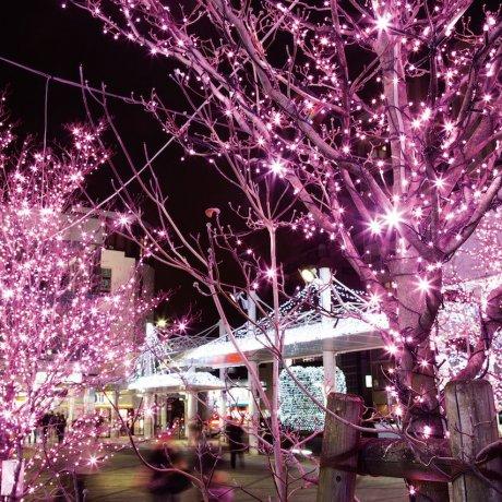 Nishi-koyama Station