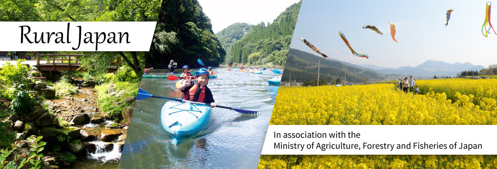 the development of the rural tourism tourism essay Characteristics and issues of rural tourism in japan rural areas, many problems must be solved to make the sustainable development of tourism a reality.
