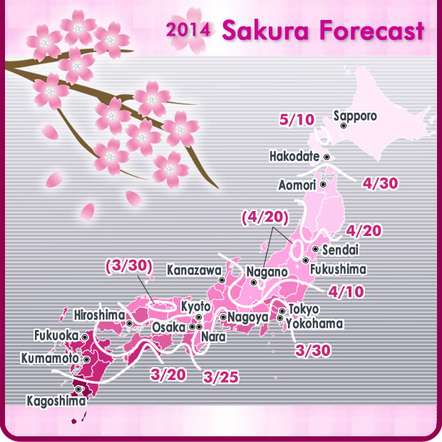 Japan Travel - Cherry Blossom Season - Sakura and Hanami Forecast 2014